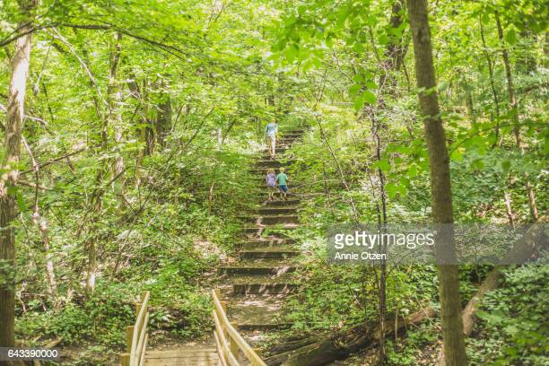 America's Heartland - Man and Children walking up nature steps