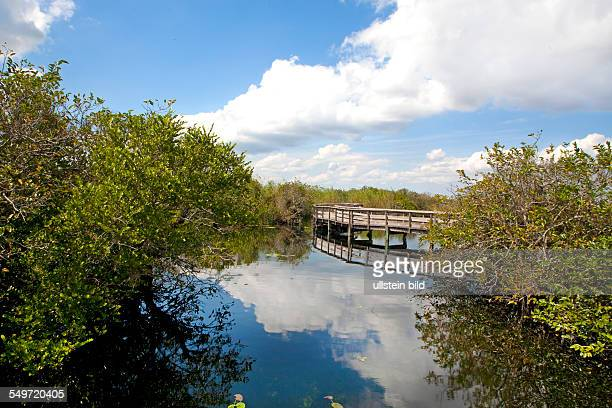 Amerika, USA, Florida, Sunshine State,Atlantic Ocean , Caribbean Sea, Everglades National Park, Everglades, Okeechobee, national park, UNESCO,...