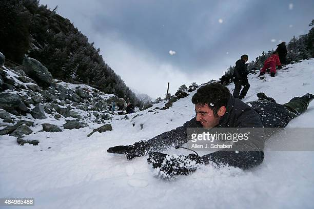 Amid light snowfall Steven DePaul of Chino slides on headfirst on his stomach down the mountain at Mt Baldy after the area received about 7' of new...