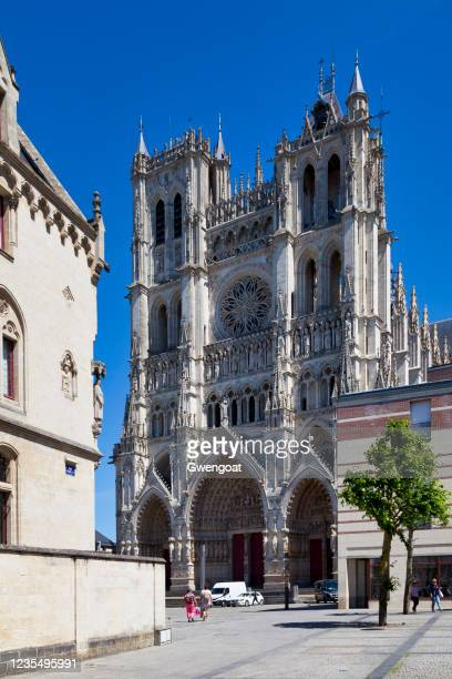 amiens cathedral - gwengoat stock pictures, royalty-free photos & images