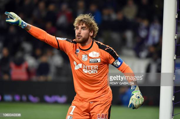 Amiens's goalkepper Regis Gurtner react during the French L1 football match between Toulouse and Amiens on november 10 at the municipal stadium in...
