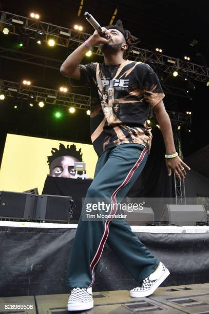 Amine performs during Lollapalooza 2017 at Grant Park on August 5 2017 in Chicago Illinois