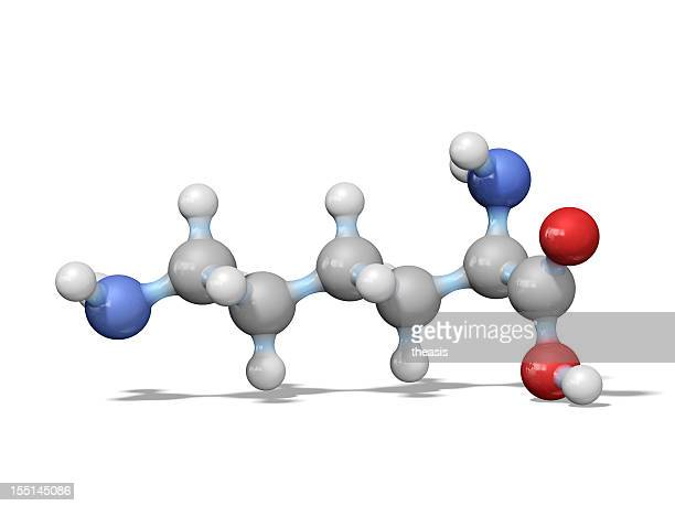 amino acid lysine - theasis stock pictures, royalty-free photos & images