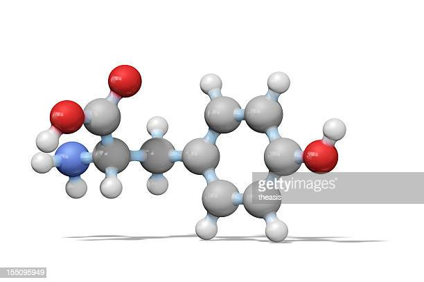 Amino Acid Tyrosine