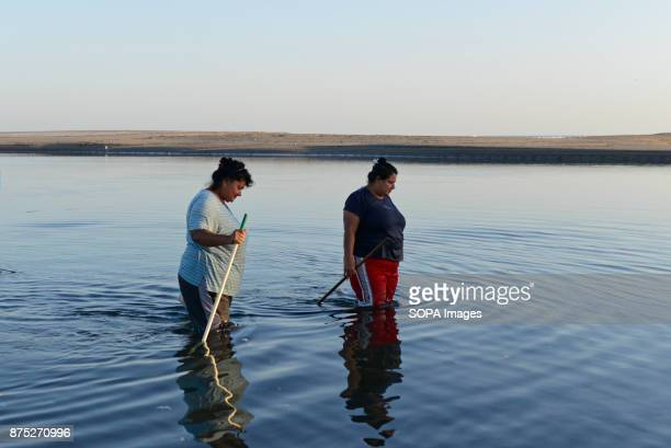 Aminta and Dalia are fishing punche a species of crab and one of the primarirly resources of the local community in the small fishing town of Las...