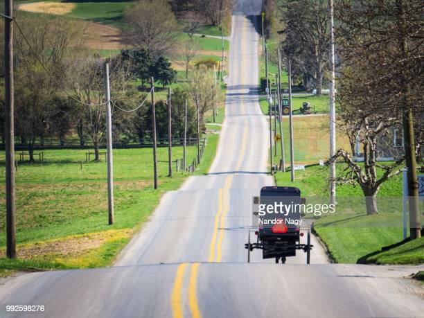 Amish Buggy - Lancaster