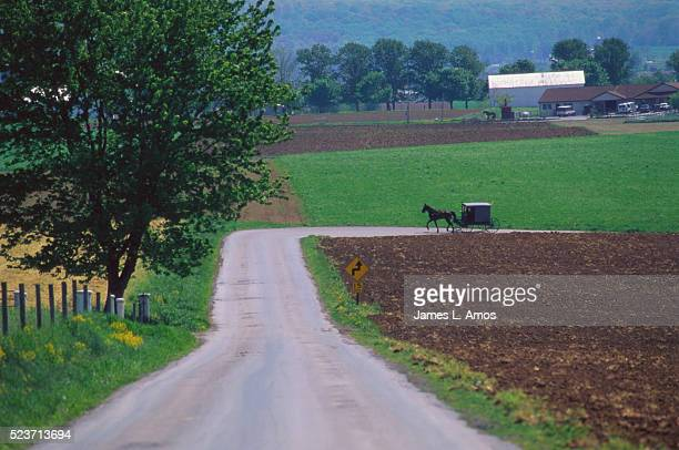 Amish Buggy Traveling Farm Road