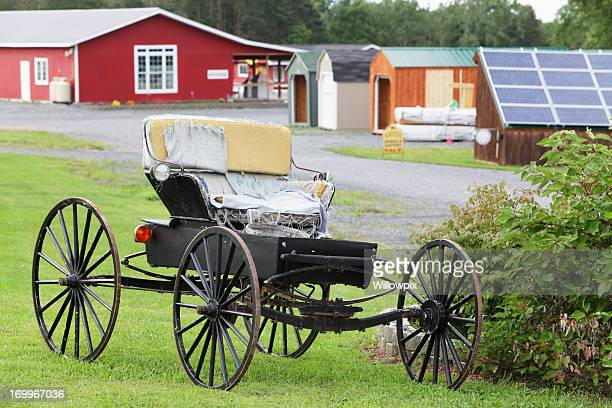 Amish Carriage Buggy with Torn Seat Covers