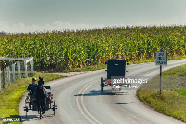Amish carriages on country road