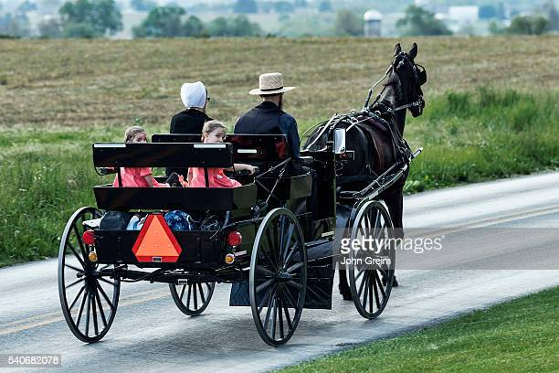 Amish family in horse drawn buggy