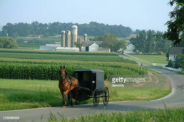 amish farm land - pennsylvania stock pictures, royalty-free photos & images