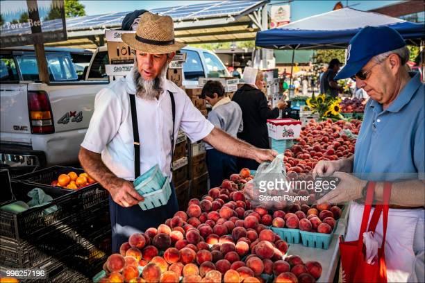 Amish farmer selling produce in market