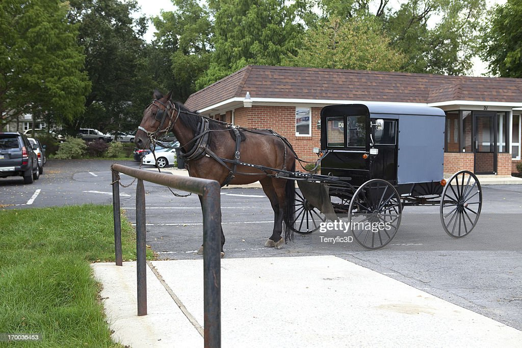 Amish Horse And Buggy In Parking Lot High-Res Stock Photo ...
