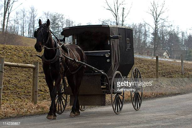 amish horse and buggy - carriage stock pictures, royalty-free photos & images