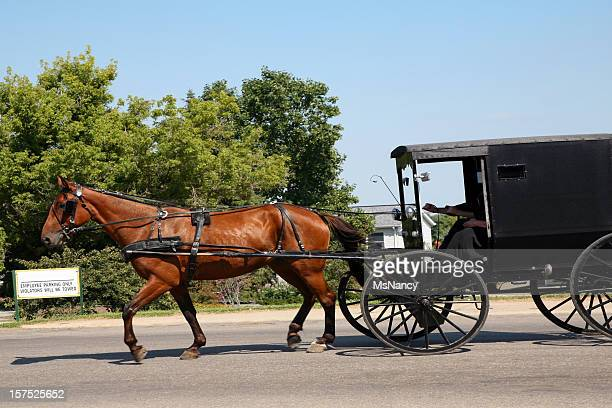 amish horse & buggy on street - amish woman stock pictures, royalty-free photos & images