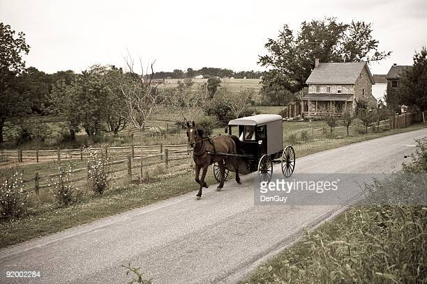 amish horse-drawn buggy lancaster county pennsylvania - carriage stock pictures, royalty-free photos & images