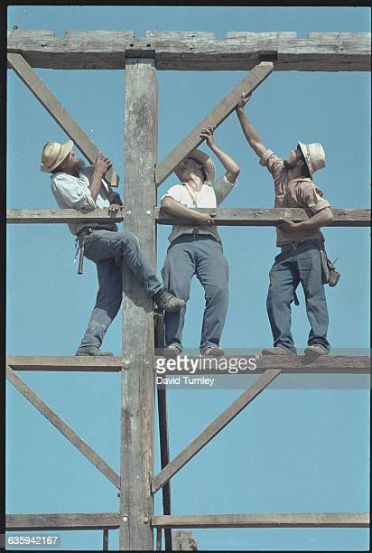 Amish Men Building a Barn