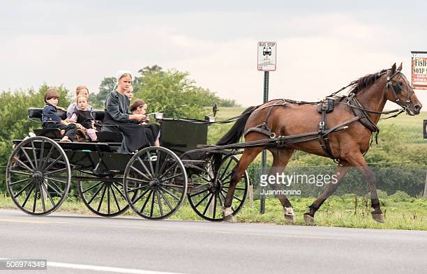 amish mother driving her carriage