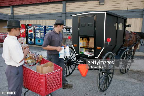 Amish teen boys loading a groceries buggy