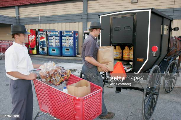 Amish teen boys loading groceries onto a buggy in Nappanee