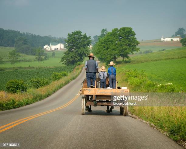 Amish wagon going to market