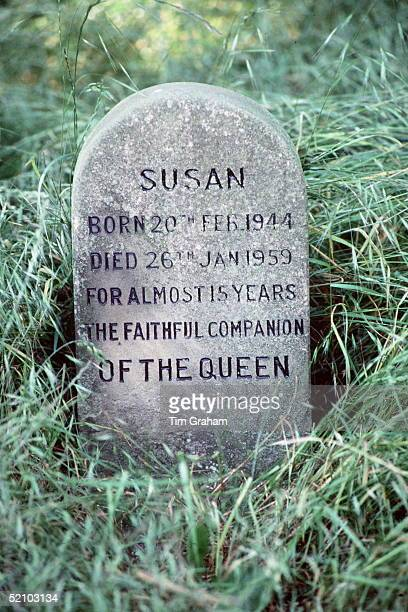 Among The Corgis' Graves At Sandringham In Norfolk Is The Grave Of Susan, The First Of The Queen's Dogs, Who Was A Great Favourite Of The Queen And...