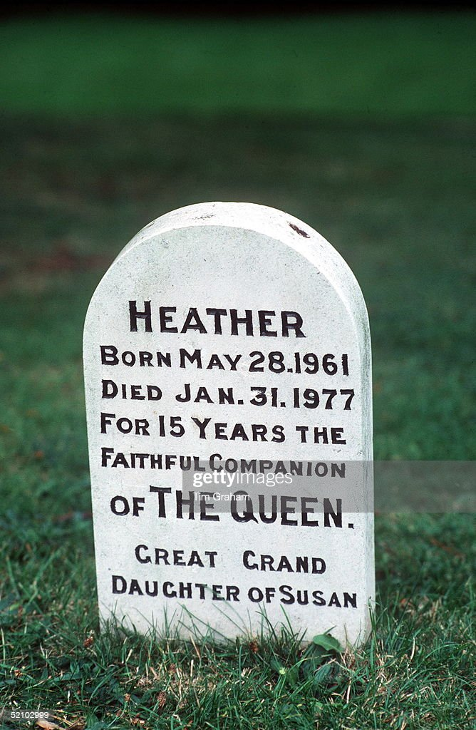 Among The Corgis' Graves In The Grounds Of Sandringham In Norfolk Is The Grave Of Heather, One Of The Queen's Favourite Dogs.circa 1980s