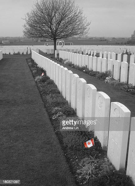 CONTENT] Among the gravestones at Tyne Cot Cemetery a few of them had small Canadian flags placed at their foot I isolated the red in these two flags...