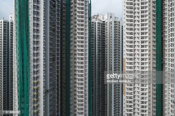 amongst the skyscrapers, hong kong - hong kong stock pictures, royalty-free photos & images