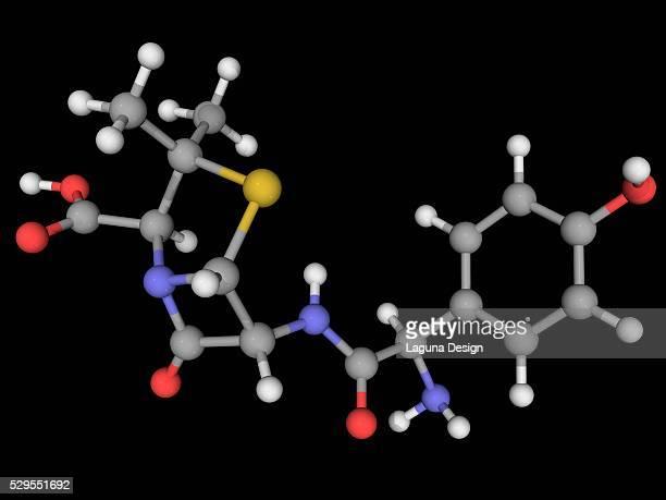 Amoxicillin drug molecule