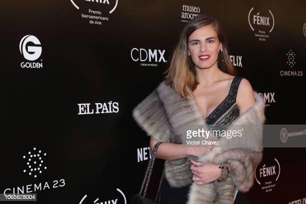 Amparo Barcia attends the Iberoamerican Fenix Film Awards 2018 at Teatro de la Ciudad Esperanza Iris on November 7 2018 in Mexico City Mexico