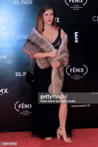 Amparo Barcia poses for pictures on the red carpet during the Iberoamerican Fenix Film Awards 2018 at Teatro de la Ciudad Esperanza Iris on November...