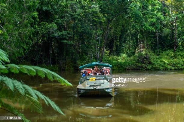 オーストラリア クイーンズランド州キュランダジャングルで水陸両用車dukwが走行 - クランダ ストックフォトと画像