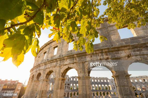amphitheatre framed by chestnut leaves during sunset, pula, istria, croatia - イストリア半島 プーラ ストックフォトと画像