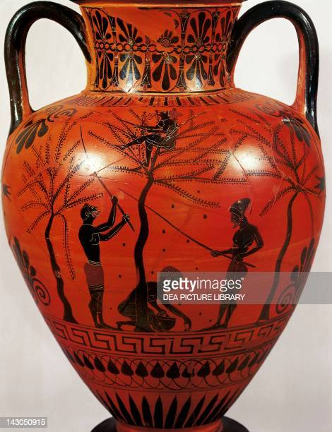 Amphora representing the olive harvest blackfigure ceramics Greece Greek Civilization 6th Century BC London British Museum