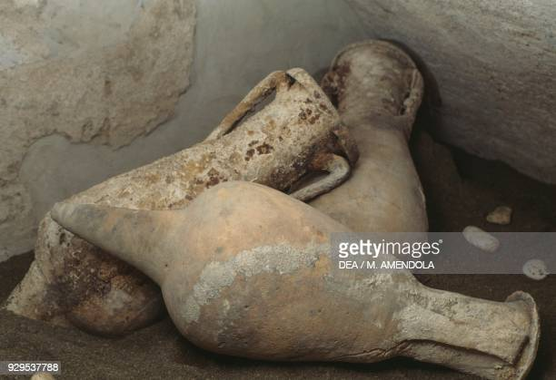 Amphorae from the shipwreck of Chiessi Elba Tuscany Italy Roman civilisation 1st century BC