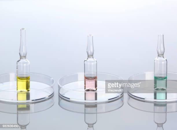 Ampullae in petri dishes