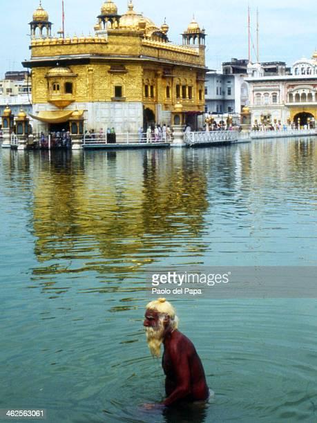 CONTENT] Amritsar Golden Temple Brahmin Priest