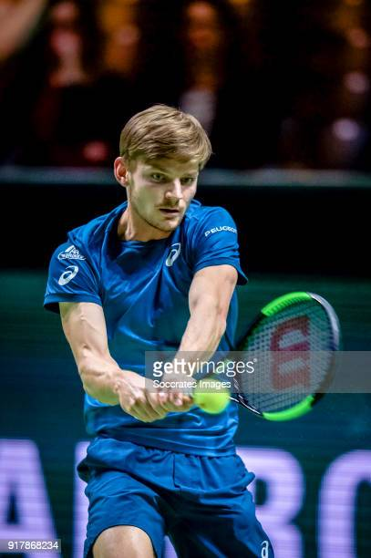 Amro WTT David Goffin during the ABN Amro World Tennis Tournament at the Rotterdam Ahoy on February 13 2018 in Rotterdam Netherlands