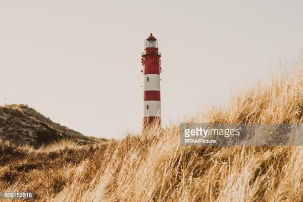 Amrum Leuchtturm in den Dünen