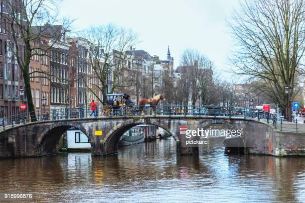 amsterdam paard en wagen, nederland - koets stockfoto's en -beelden