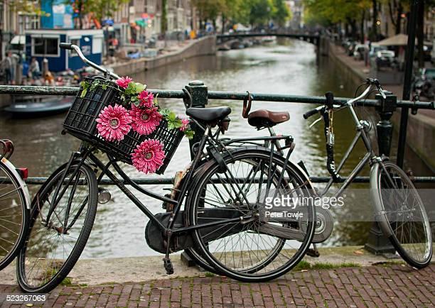 Amsterdam Tourist