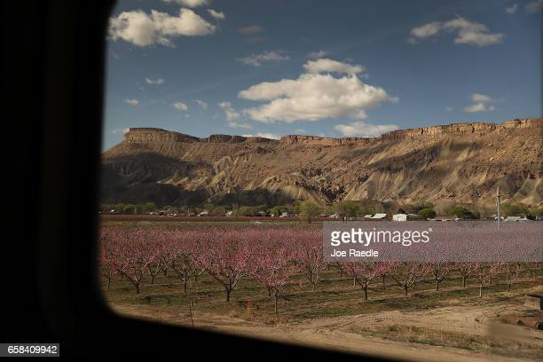 Amtrak's California Zephyr rolls past a farm during its daily 2438mile trip to Emeryville/San Francisco from Chicago that takes roughly 52 hours on...