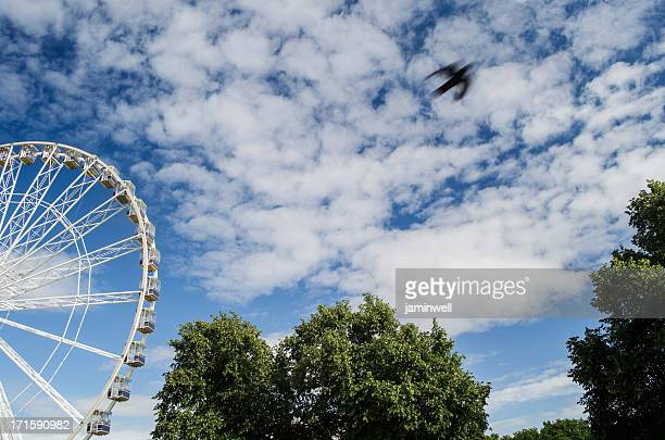 amusement park with ferris wheel and sky