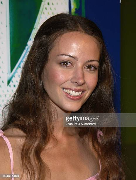Amy Acker during The WB Network's 2002 Summer Party at Renaissance Hollywood Hotel in Hollywood California United States