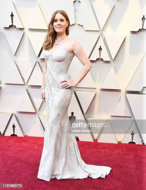 Amy Adams arrives at the 91st Annual Academy Awards at Hollywood and Highland on February 24 2019 in Hollywood California