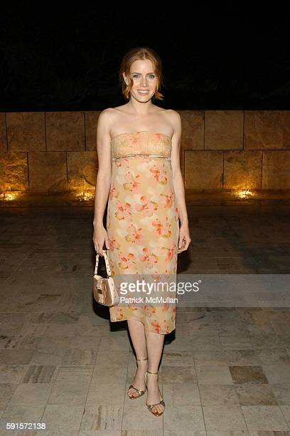 Amy Adams attends Dior and EIF's Women's Cancer Research Fund Celebrate the Launch of Dior Christal at Getty Museum on December 13 2005