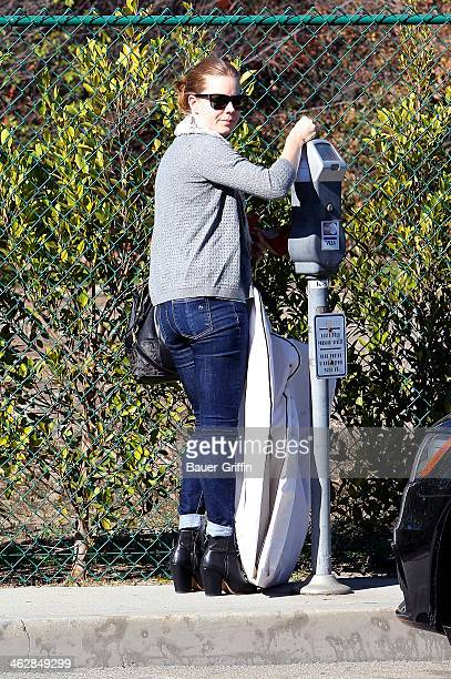 Amy Adams is seen on January 15 2014 in Los Angeles California