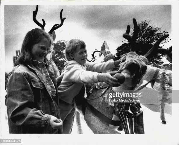 Amy and Bradley Johnston of Gosford with Grace Bros Float at Mrs Macquaries Chair November 11 1989