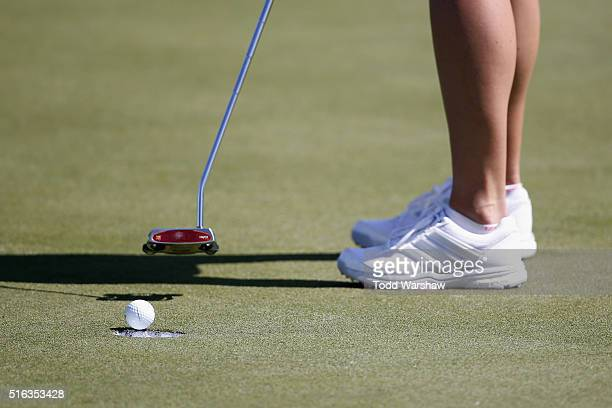 Amy Anderson putts on the 8th green during the second round of the LPGA JTBC Founders Cup at Wildfire Golf Club on March 18 2016 in Phoenix Arizona